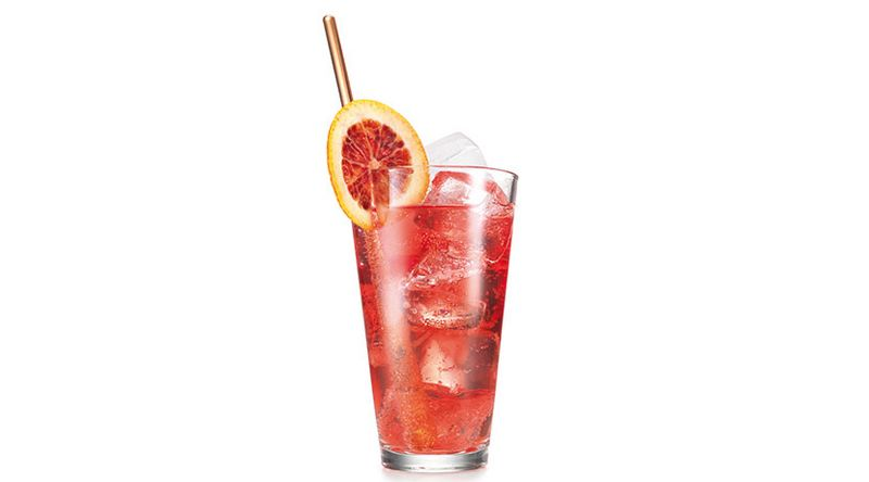 Cranberry Vodka Fizz