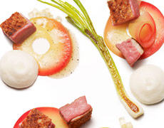 Wild Duck / Wild Apples / Apple Jelly / Apple-Calvados Espuma